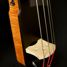 Azola Bass Restoration nashville flood lacquer vintage amber figured flame maple electric upright tacoma guitar repair refinish guitar refinish emg preamp